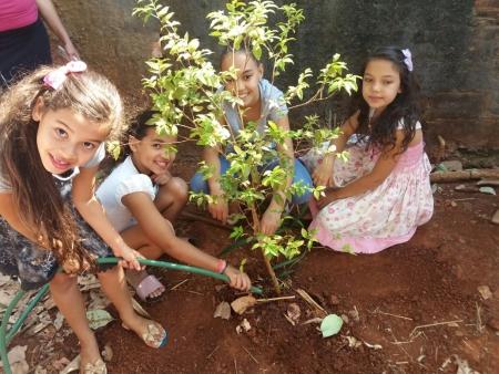 Alunos fazendo plantio de mudas de árvores